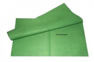 Professional Microfaser Vliestuch in der Farbe Grün